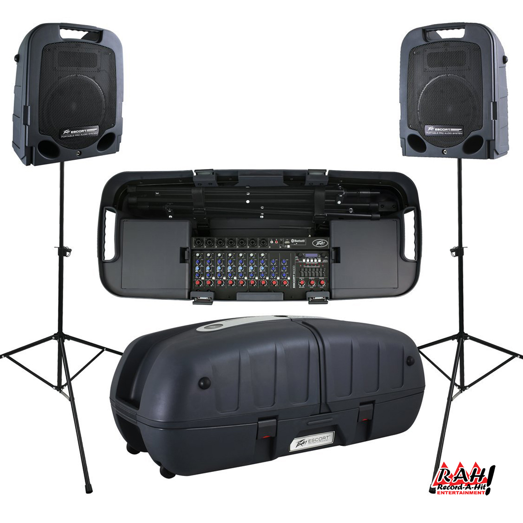 High Quality Sound System - Record-A-Hit Entertainment Party